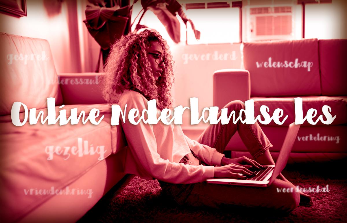Nederlandse leren online